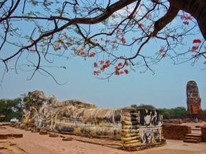 Stolz-Reise-thailand-ayutthaya-liegend-Buddha-Statue